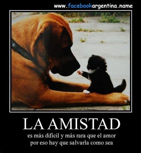 imagenes emotivas chistosas 64248d1350930747 amor y amistad 2012 amistad mas dificil y