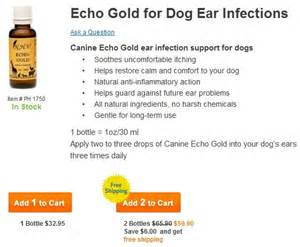 All natural holistic dog ear infections treatments herbal dog