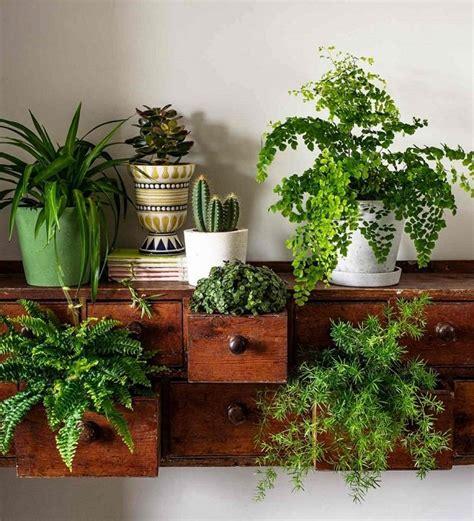 15 Brilliant Diy Vertical Indoor Garden Ideas To Help You Indoor Planter Ideas