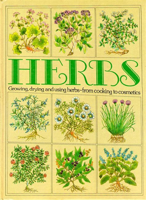 herb growing chart charts pictures and cosmetics on pinterest