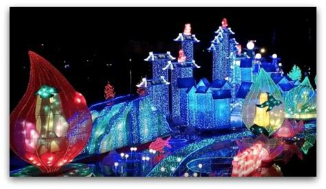 2016 Christmas Events In Miami Zoo Lights Miami