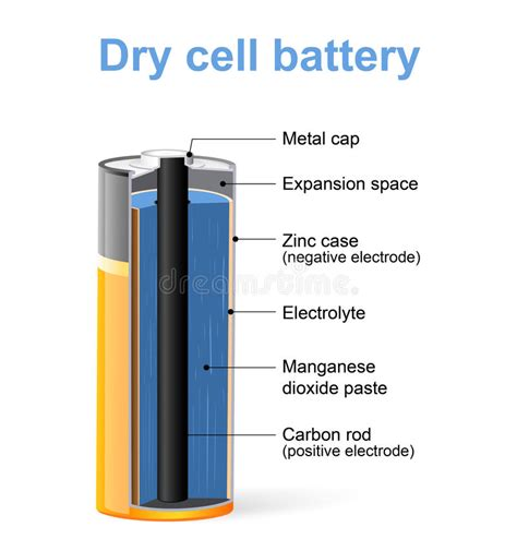 diagram of battery cell parts of a cell battery stock vector illustration