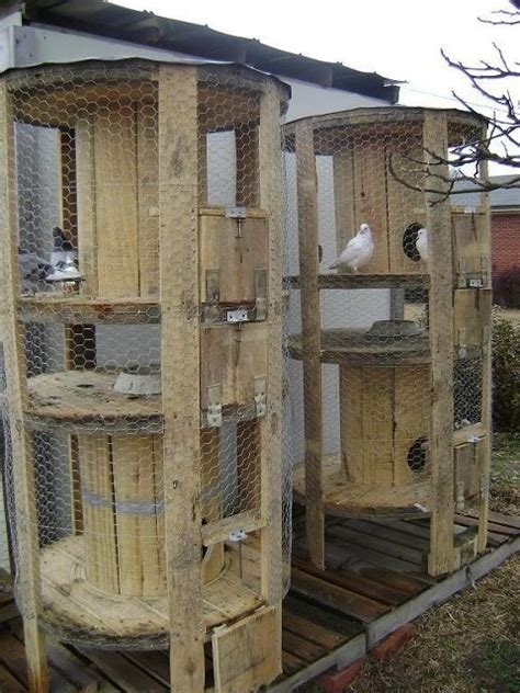 dove coop outside pinterest wire coops and ideas