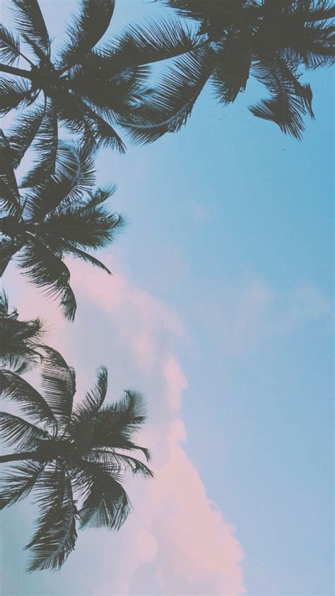 tumblr wallpaper ideas  pinterest iphone