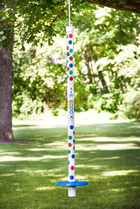 air pogo swing air pogo xtreme blue 113kg by peppertown online store