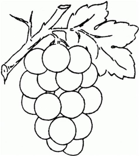imagenes de uvas para colorear e imprimir uvas para colorear