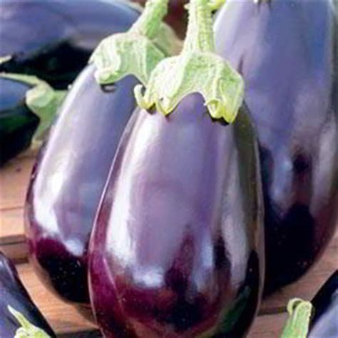 vegetables to plant in february when to plant your vegetables with suttons seeds