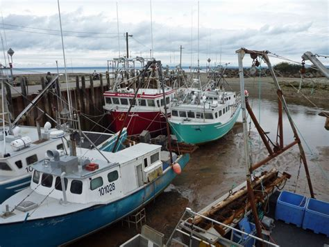 fishing boat for sale nb images of fundy national park the playground of the maritimes
