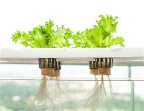 best indoor garden system indoor garden designs 4 types to consider dig this design
