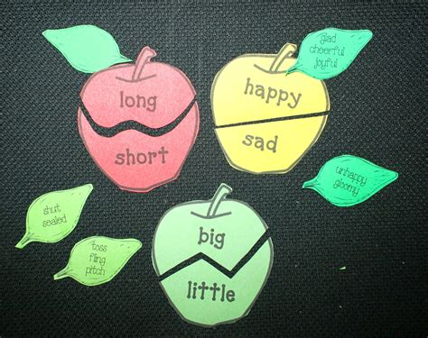 pattern of action synonym classroom freebies synonym antonym apples