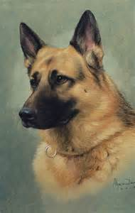 Pics photos german shepherd pet portrait oil painting gallery
