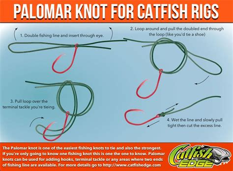 four fishing knots every catfish angler should