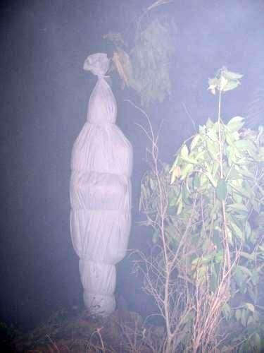 film hantu foto hantu pocong 1 copy klinik ramalan