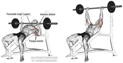 Incline Bench Press Form by Incline Barbell Bench Press And Chest