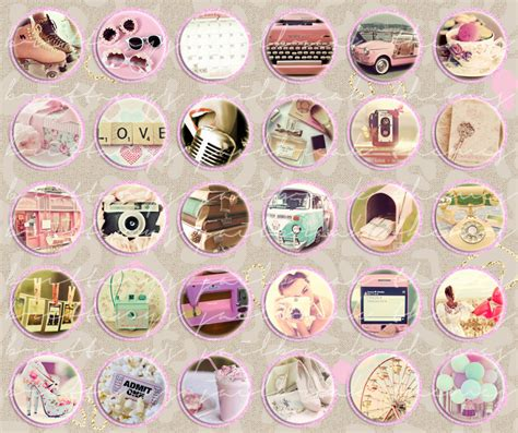 girly winterboard themes brittany s themes girly vintage icons