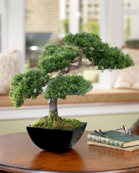 Home Design Center Dallas artificial bonsai trees lifelike cypress trees by