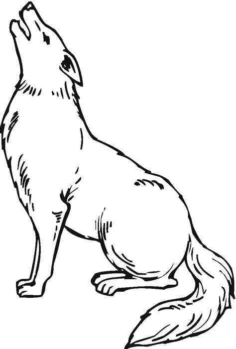 free printable coyote coloring pages for kids