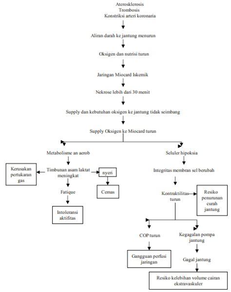 format askep penyakit dalam laporan pendahuluan akut miokard infark ami