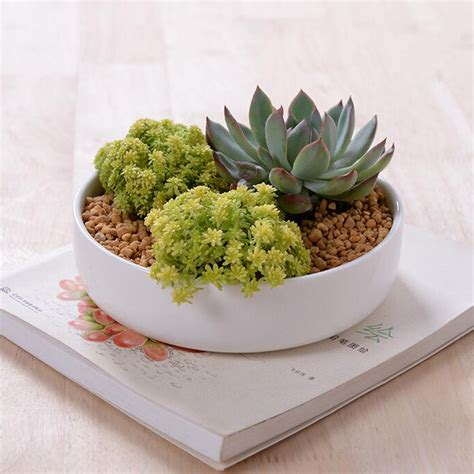 Ceramic Flower Planters by Buy Wholesale Glazed Ceramic Planters From China