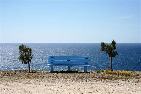 a view from the bench bench with a view photograph by phoenix michael davis