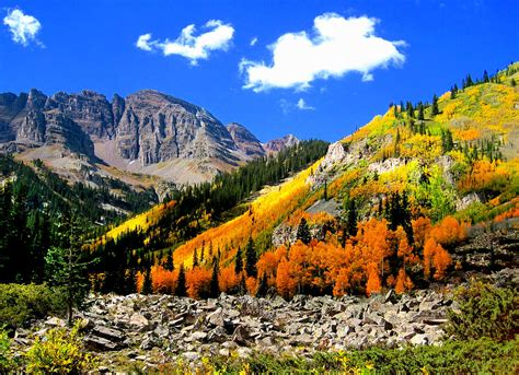 aspen fall colors aspen fall colors by bob augsburg