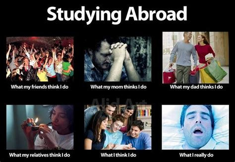 Studying Abroad Meme - the best memes of 2012 meld magazine australia s international student news website
