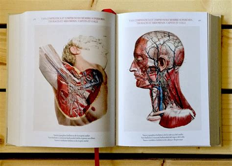 bourgery atlas of human 3836556626 the complete atlas of human anatomy and surgery on