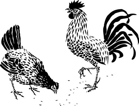hen and rooster clip art at clker com vector clip art