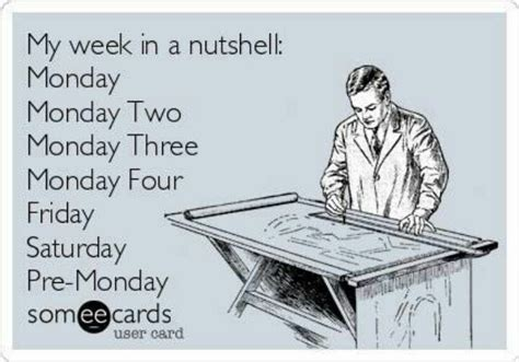 Funny Ecard Memes - monday some ecards pinterest
