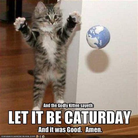 Caturday Meme - caturday when your bored