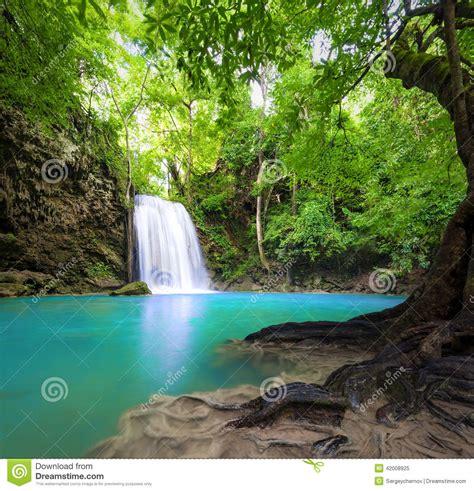 Sun Bell Tuna Rica Rica fond de paysage de cascade nature image stock