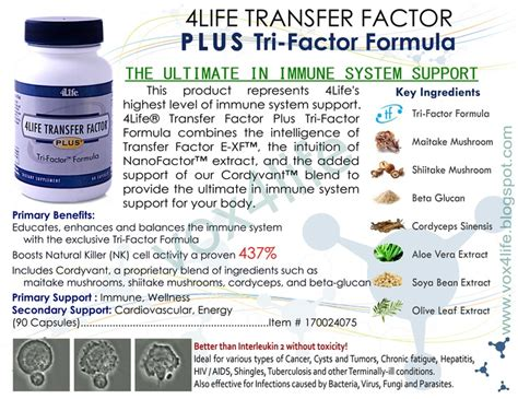 Tf Trifactor Formula 1 4life transfer factor plus tri factor formula combines the intelligence of transfer factor e xf