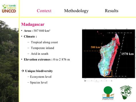 Forest Part Time Mba by Harifidy Rakoto Ratsimba Quot Forest Ecosystem Resilience And