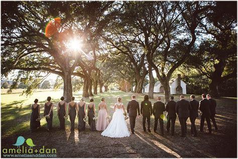 mcleod plantation wedding photos . kristen   brendon