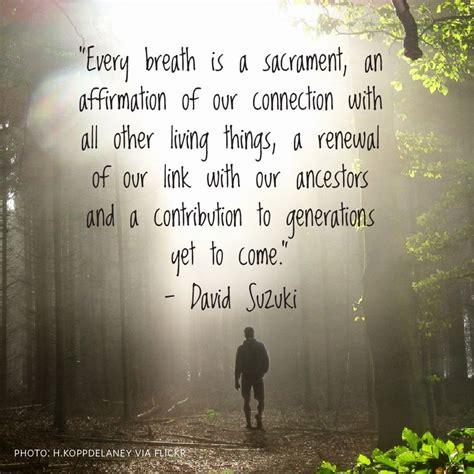 David Suzuki Quotes by Words Of Wisdom By David Suzuki Quotes