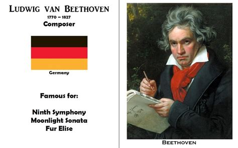 beethoven biography for students 14 best images about products i love on pinterest level
