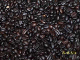 Kopi Arabika Flores Manggarai 250 Gram retno ika holistic business manggarai coffee flores