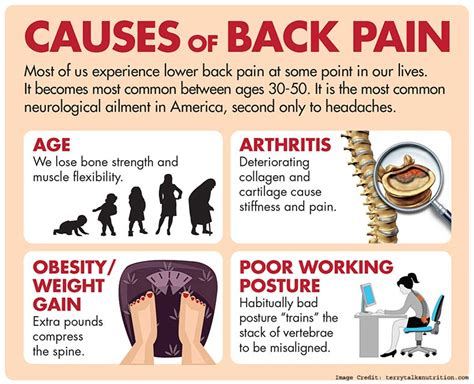 Is Backpain A Common Detox Symptom by Back Causes Symptoms And Treatment To Reduce Back