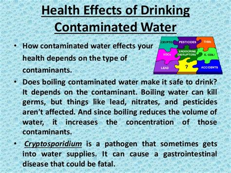 8 Things Its Ok To Consume In Moderation by Safe Water