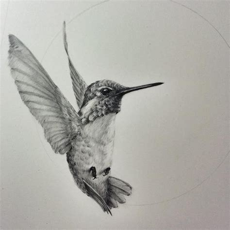black and grey hummingbird tattoo hummingbird glad tattoo buscar con google tattoo