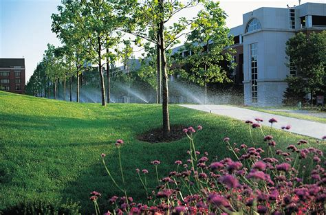landscape sprinkler system irrigation is grass greener on the other side buildipedia
