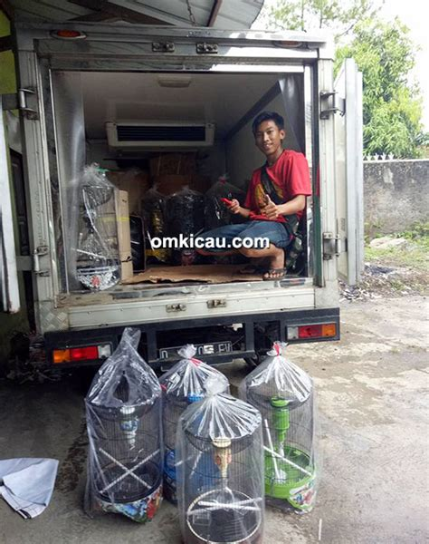 Tebok Sangkar Lovebird Malang elite indonesia sangkar lovebird berbahan fiber sangat