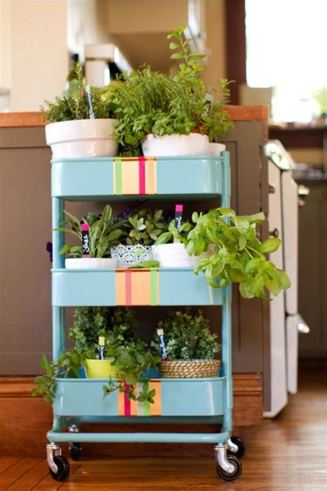 incredible ideas  indoor herb garden