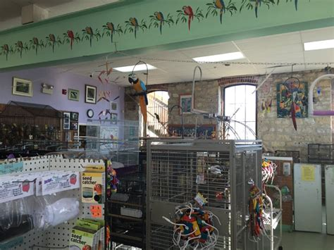 bird is the word pet stores 30 s shumway ave batavia