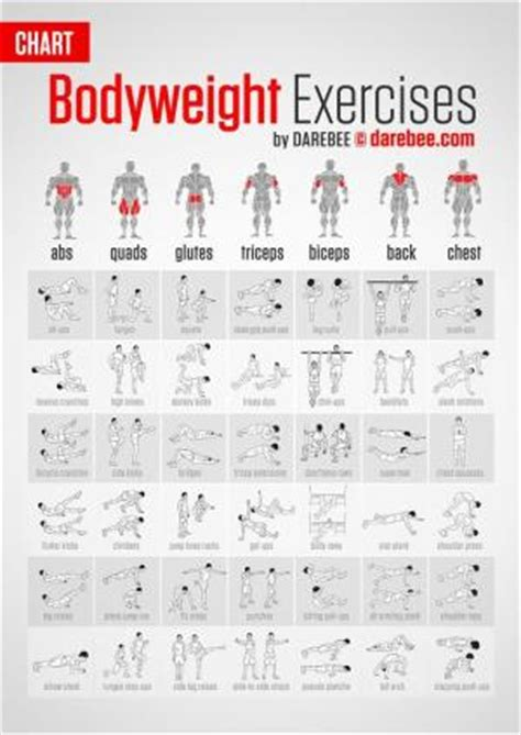 bodyweight strength 12 weeks to build and burn books top 20 bodyweight exercises for building strength