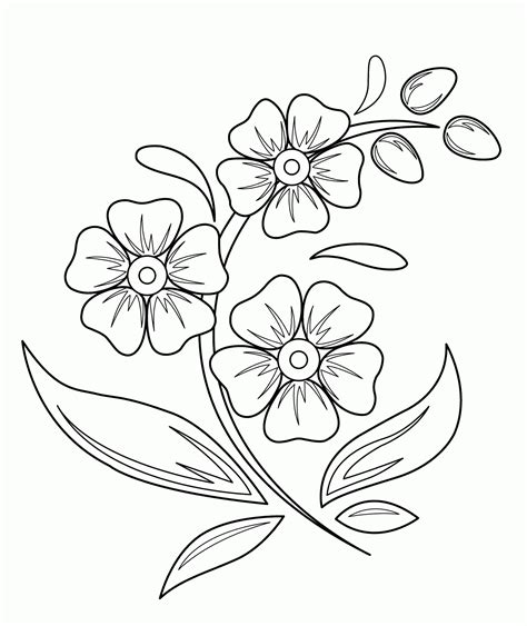 Beautiful Easy To Draw Flowers by Flowers Drawing For The Beautiful Flower Drawing Dow