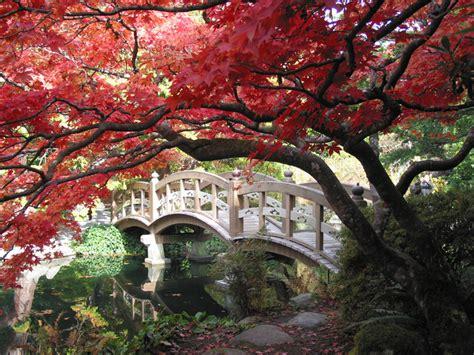 japanese bridges a love of japanese gardens confero dezso