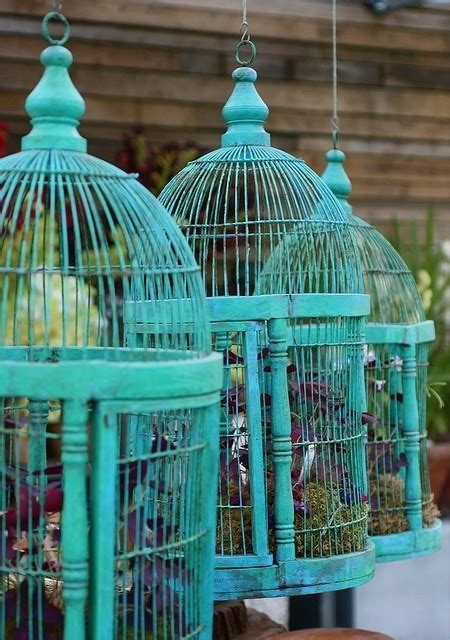Patio Bird Cages by Bird Cage Garden Turquoise