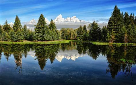 imagenes hd bosques paisajes bosques hd naturalez hermosa paisajes monta 209 as