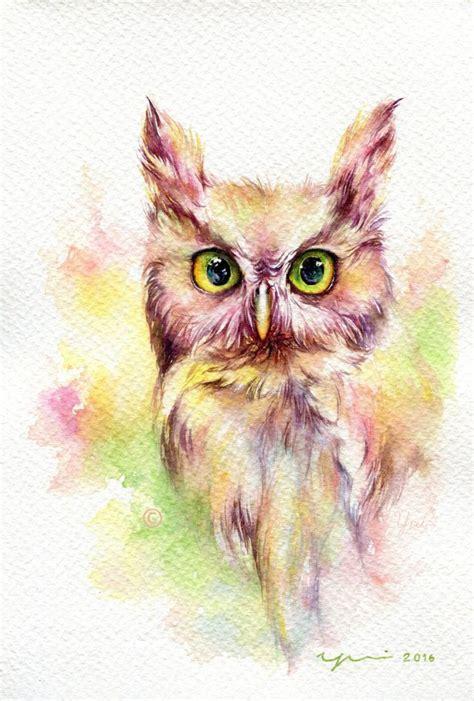 808 best owls images on owls barn owls